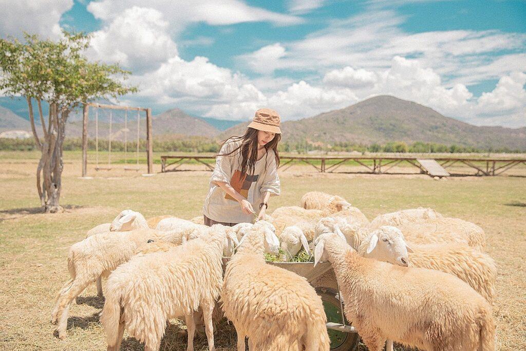 Đồng Cừu suối Tiên nổi bật với khung cảnh thiên nhiên hoang dã, nên thơ