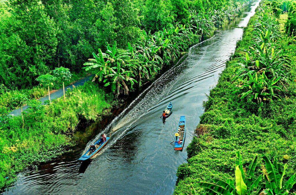 Rừng quốc gia U Minh Hạ sở hữu hệ sinh thái đa dạng