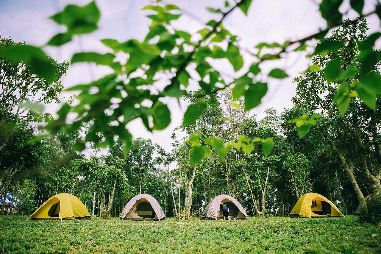 Sơn Tinh Camp là điểm du lịch được trang bị nhiều dịch vụ phục vụ cho du khách