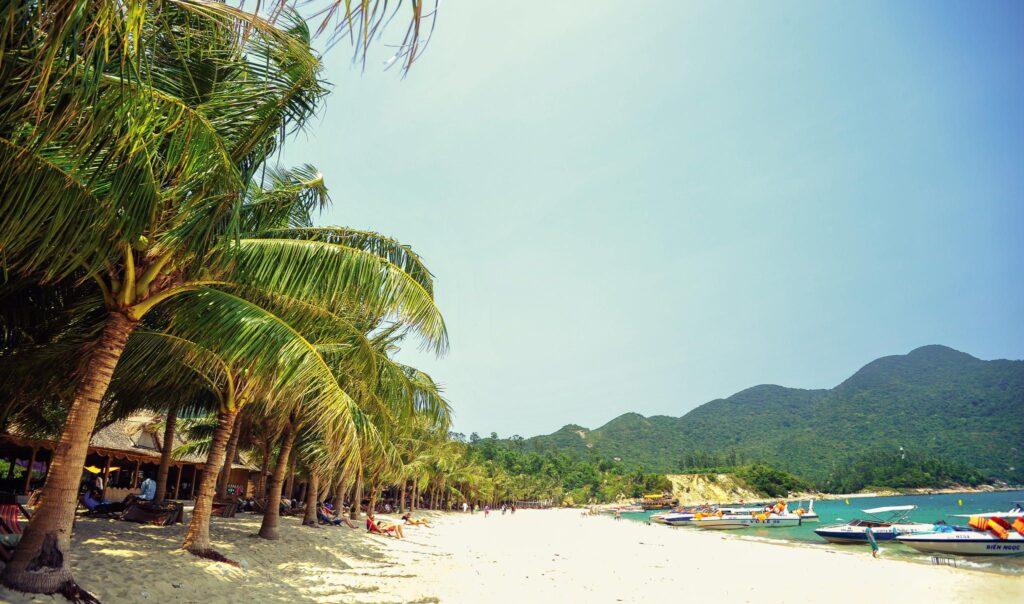 Tại bãi Ông, những rặng dừa cao sừng sững là điểm nhấn thu hút khách du lịch